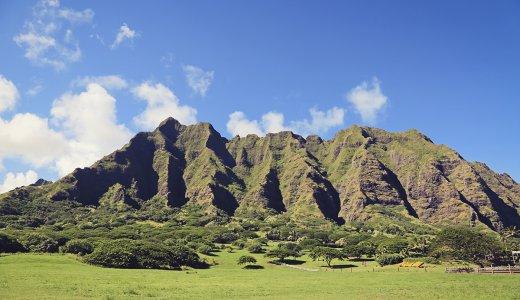 ハワイの香りMoeMoeヘッドスパ体験